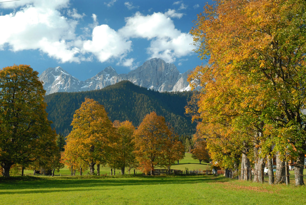 Singleurlaub Angebote und Pauschalen Ramsau / Dachstein